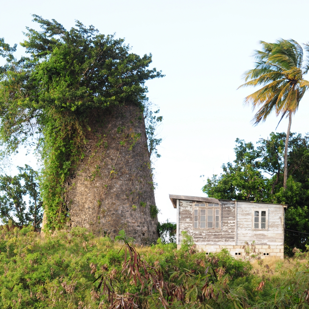 Windmill Barbados Arthur Road Landscapes.jpg