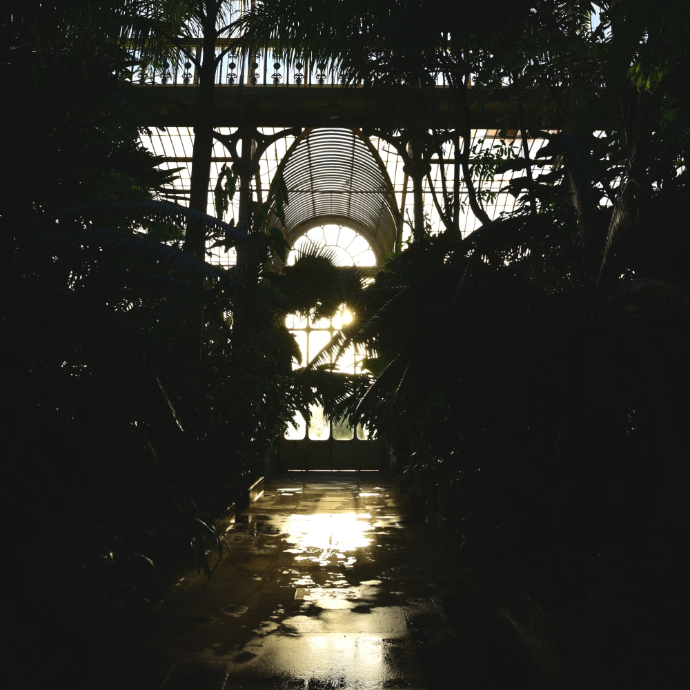 The Palm House 10 Arthur Road Landscapes.jpg
