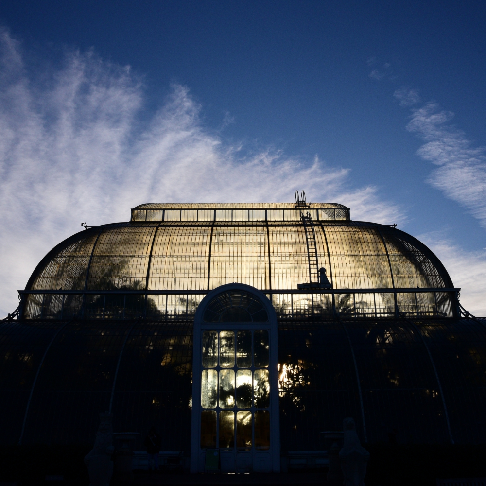 The Palm House 11 Arthur Road Landscapes.jpg