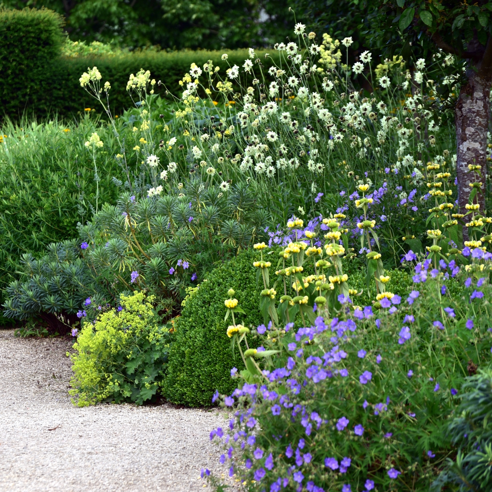 Loseley Park 14 Arthur Road Landscapes.jpg