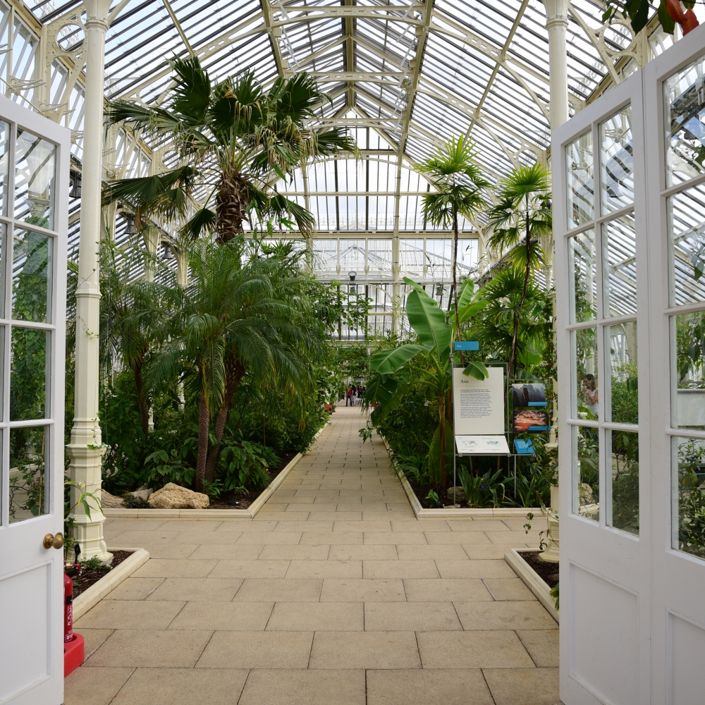 The Temperate House Kew  2 Arthur Road Landscapes.jpg
