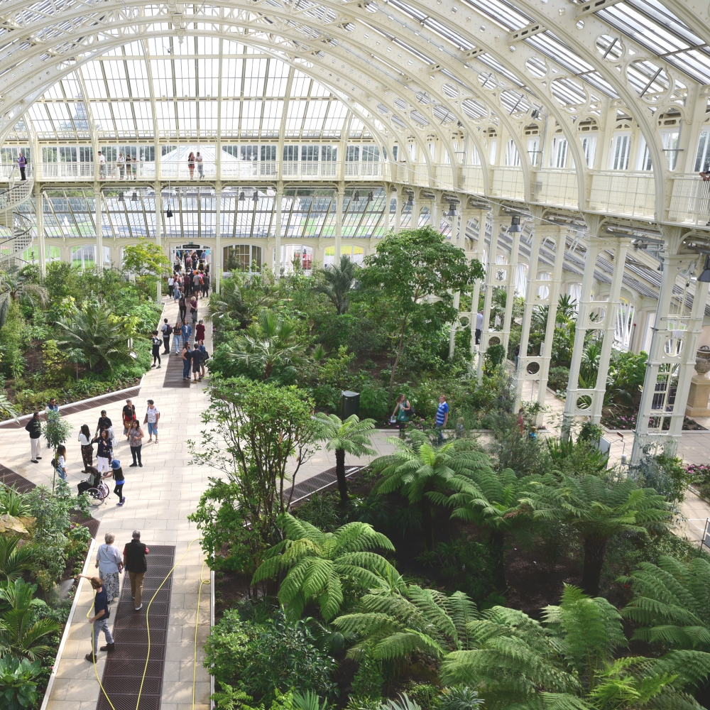 The Temperate House Kew  7 Arthur Road Landscapes.jpg