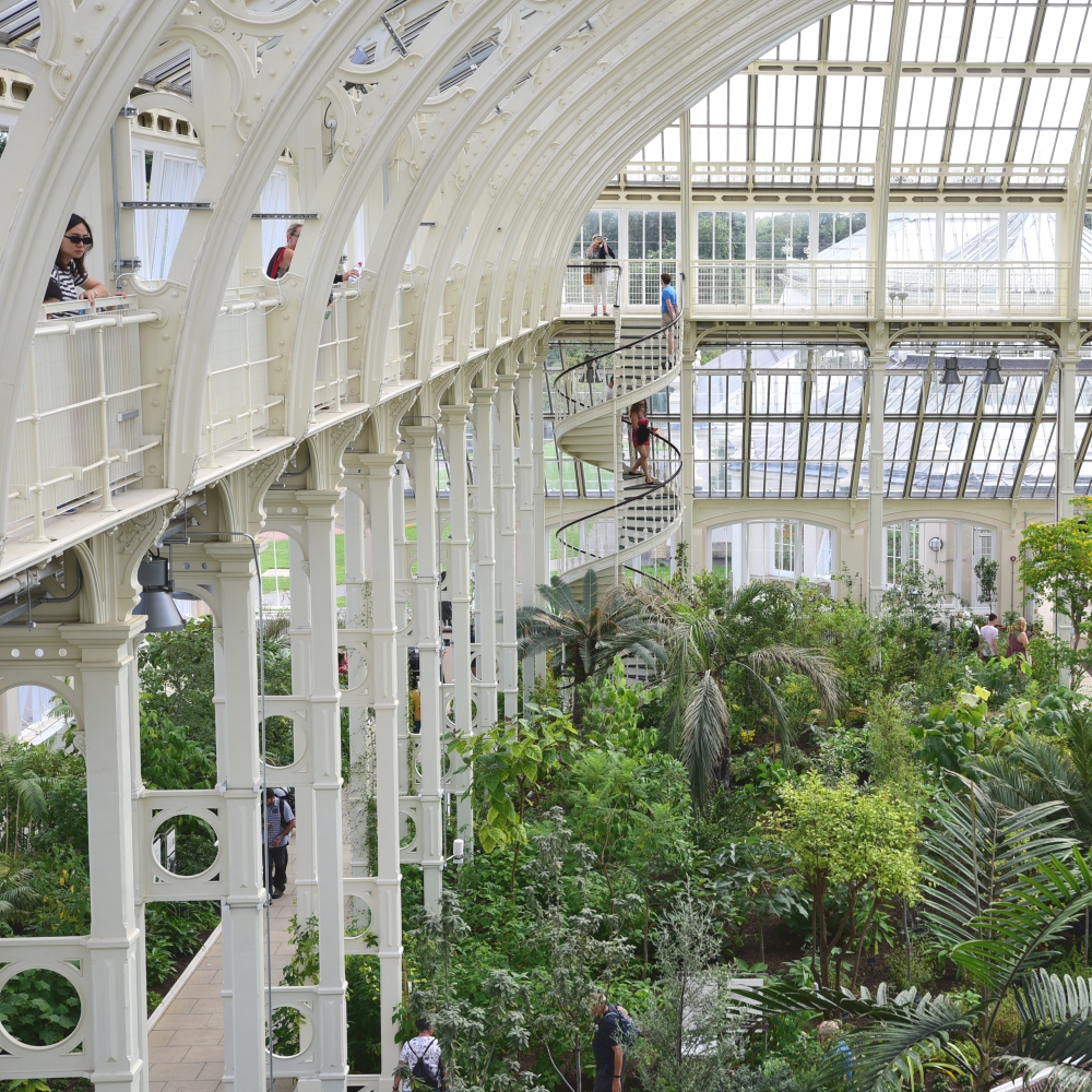 The Temperate House Kew  8 Arthur Road Landscapes.jpg