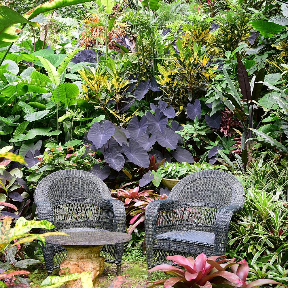 Hunte's Gardens Arthur Road Landscapes.jpg