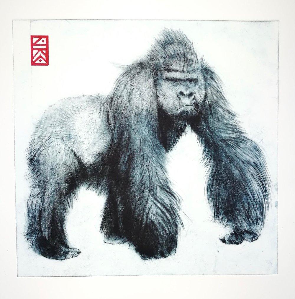 gorilla-jane-chapman.jpg