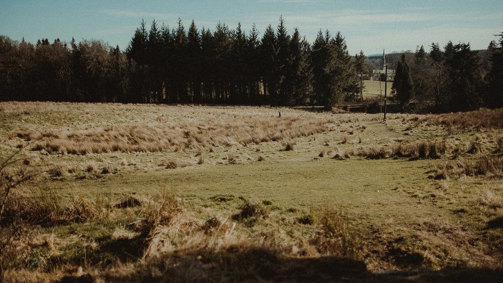 Scotland-Midlothian-Penicuik-Samuel