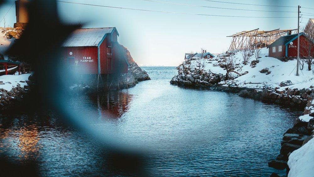 0051-voyage-photo-norvege-20190221162653-compress.jpg