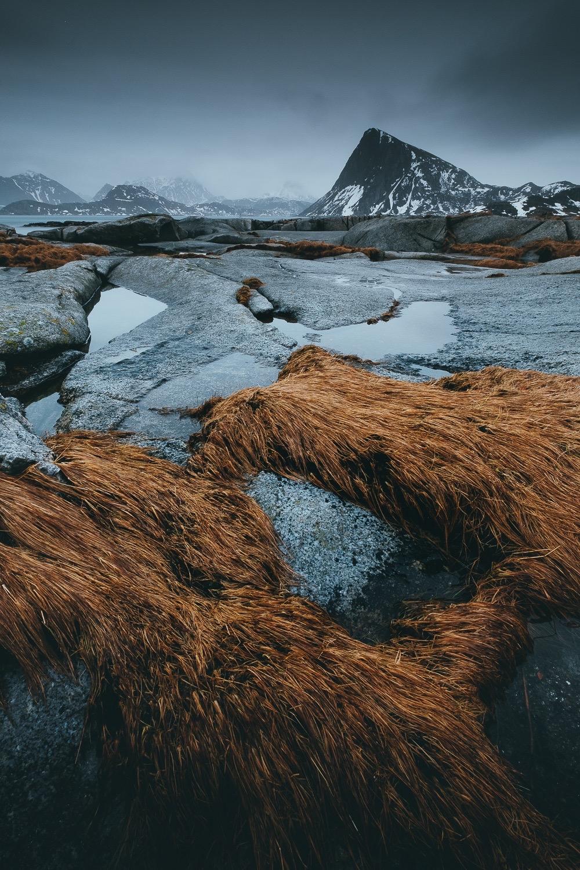 0066-voyage-photo-norvege-20190223105238-compress.jpg