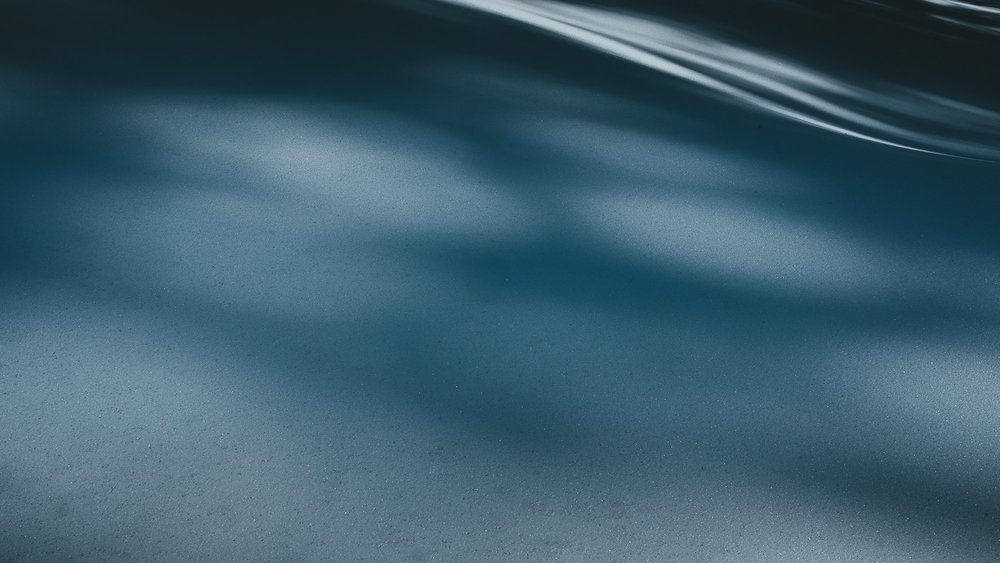 0006-isere-chartreuse-randonnee-raquette-20190217134758-compress.jpg