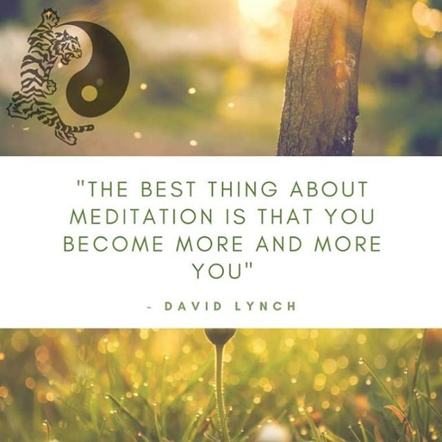 We have some special meditation courses coming in the new year ~ watch this space 🙏🏻