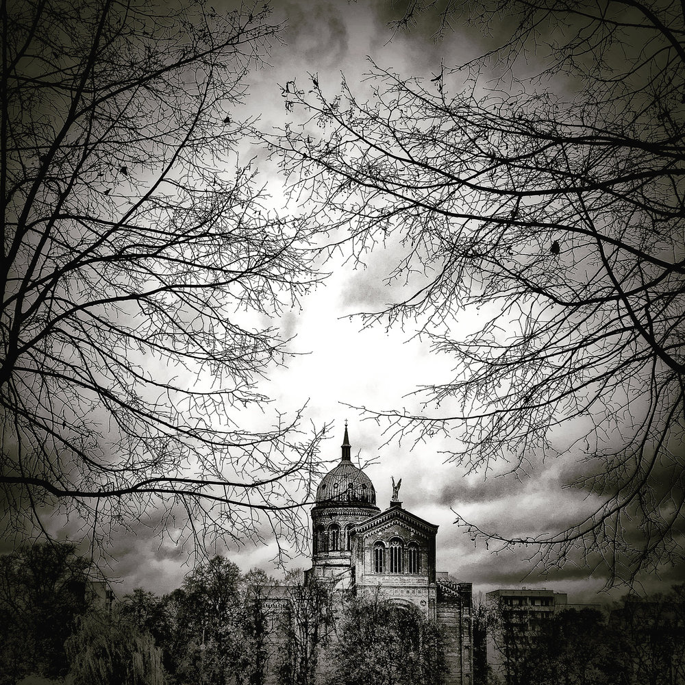 """Through the trees"" ~ Berlin Germany"