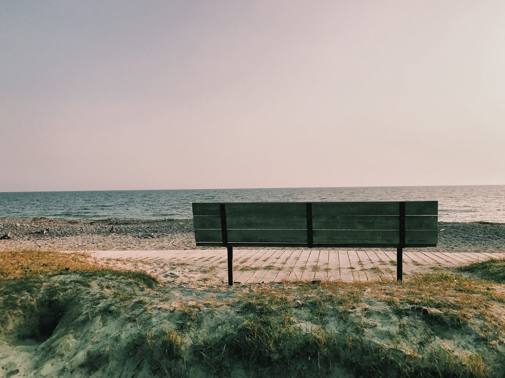 wellingtonbeachbench.JPG