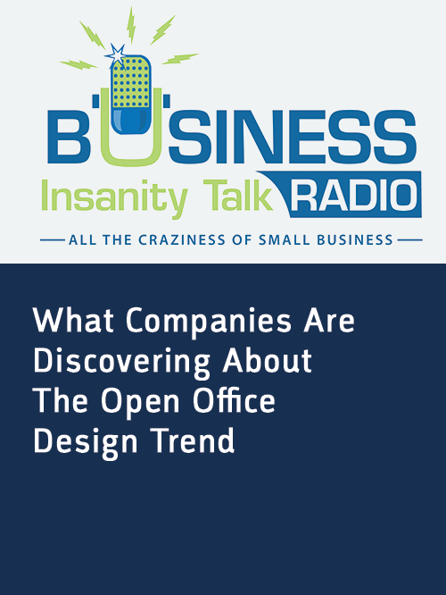 Business Insanity Talk Radio