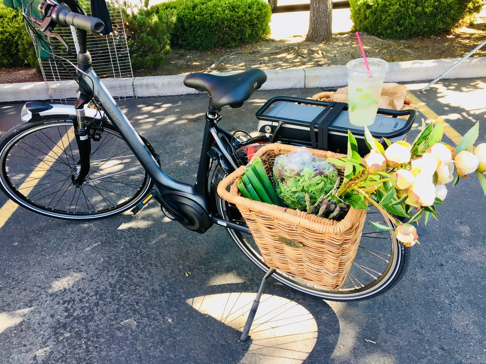 Comfort & Town e-bikes - Are you are looking for a comfortable and fully equipped e-bike for your town errands? Our comfortable around town e-bikes are the perfect way for you to get out for a leisurely ride to the farmers market and not suffer on the way up the hill home with a full load.