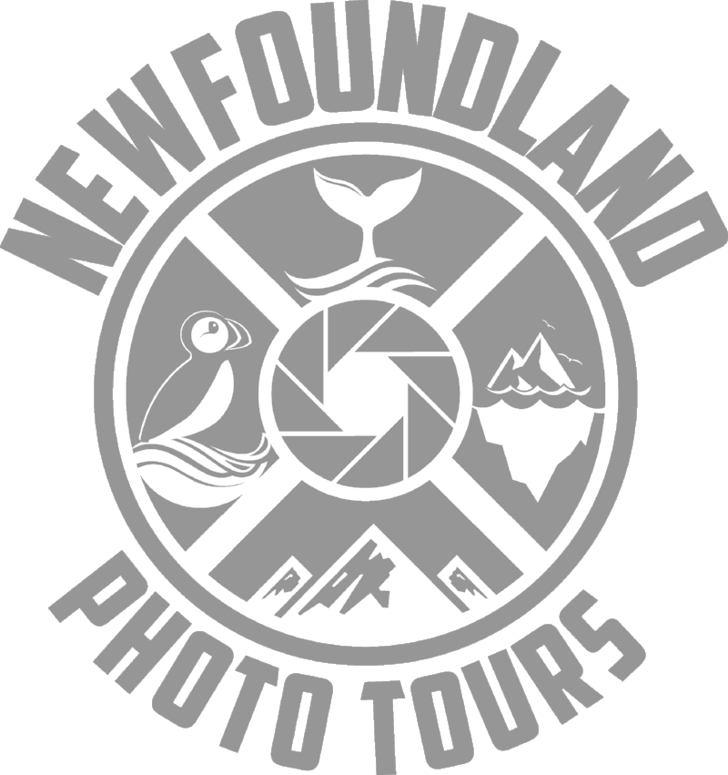 Newfoundland Photo Tours