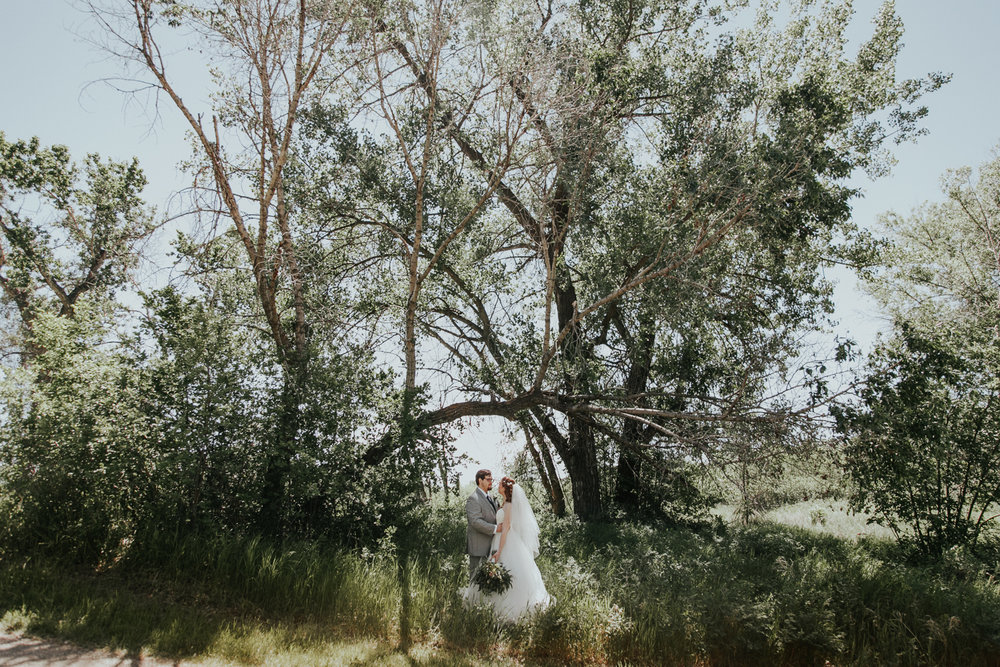 lethbridge-wedding-photographer-love-and-be-loved-photography-dan-tynnea-picture-image-photo-48.jpg