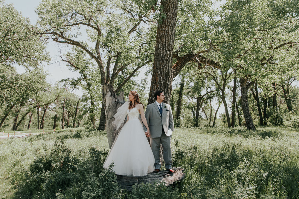 lethbridge-wedding-photographer-love-and-be-loved-photography-dan-tynnea-picture-image-photo-67.jpg