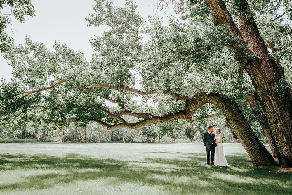 lethbridge-wedding-photography-love-and-be-loved-photographer-image-picture-photo-95.jpg