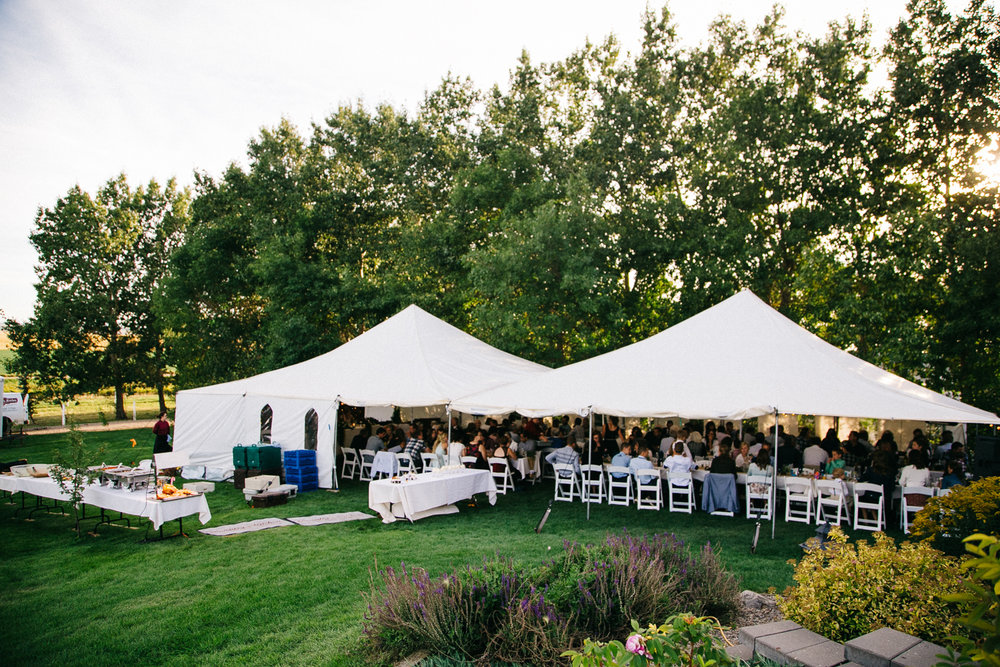 lethbridge-photographer-love-and-be-loved-photography-backyard-wedding-picture-iamge-photo-15.jpg