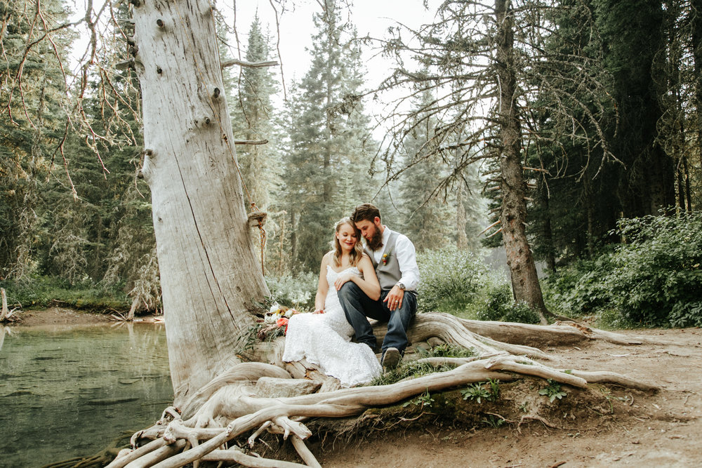 castle-mountain-wedding-photographer-love-and-be-loved-photography-lethbridge-pincher-creek-crowsnest-pass-yannick-rylee-photo-image-picture-143.jpg