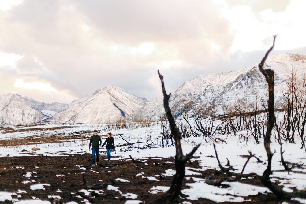 waterton-engagement-love-and-be-loved-photography-mountain-photographer-picture-image-photo-82.jpg