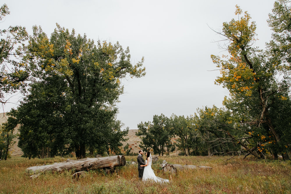 lethbridge-wedding-photographer-love-and-be-loved-photography-laura-mike-anniversary-session-engagement-portraits-picture-image-portrait-1.jpg