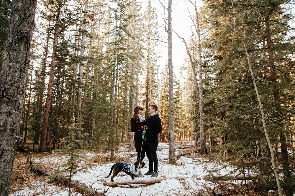 elbow-falls-calgary-photographer-banff-love-and-be-loved-photography-alissia-craig-engagement-image-photo-picture-1.jpg