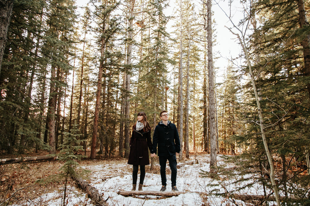 elbow-falls-calgary-photographer-banff-love-and-be-loved-photography-alissia-craig-engagement-image-photo-picture-9.jpg