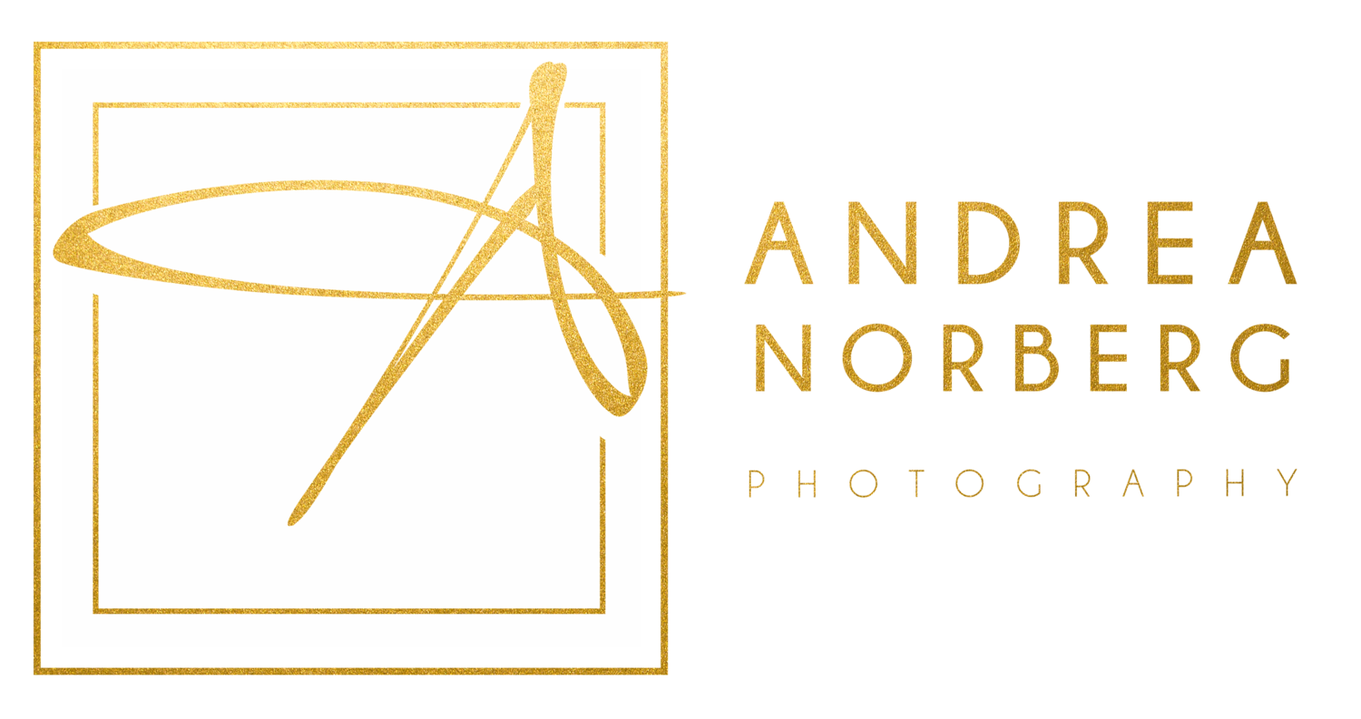 Andrea Norberg Photography | Regina Professional Photo Studio