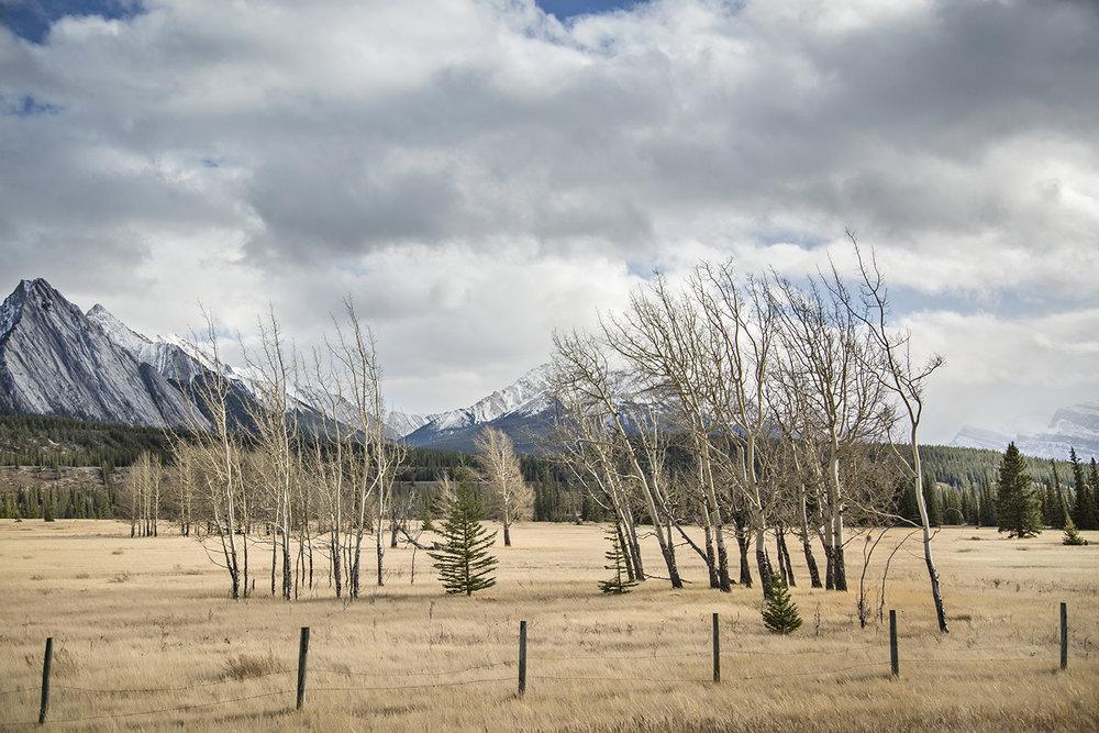 Mountains10.jpg
