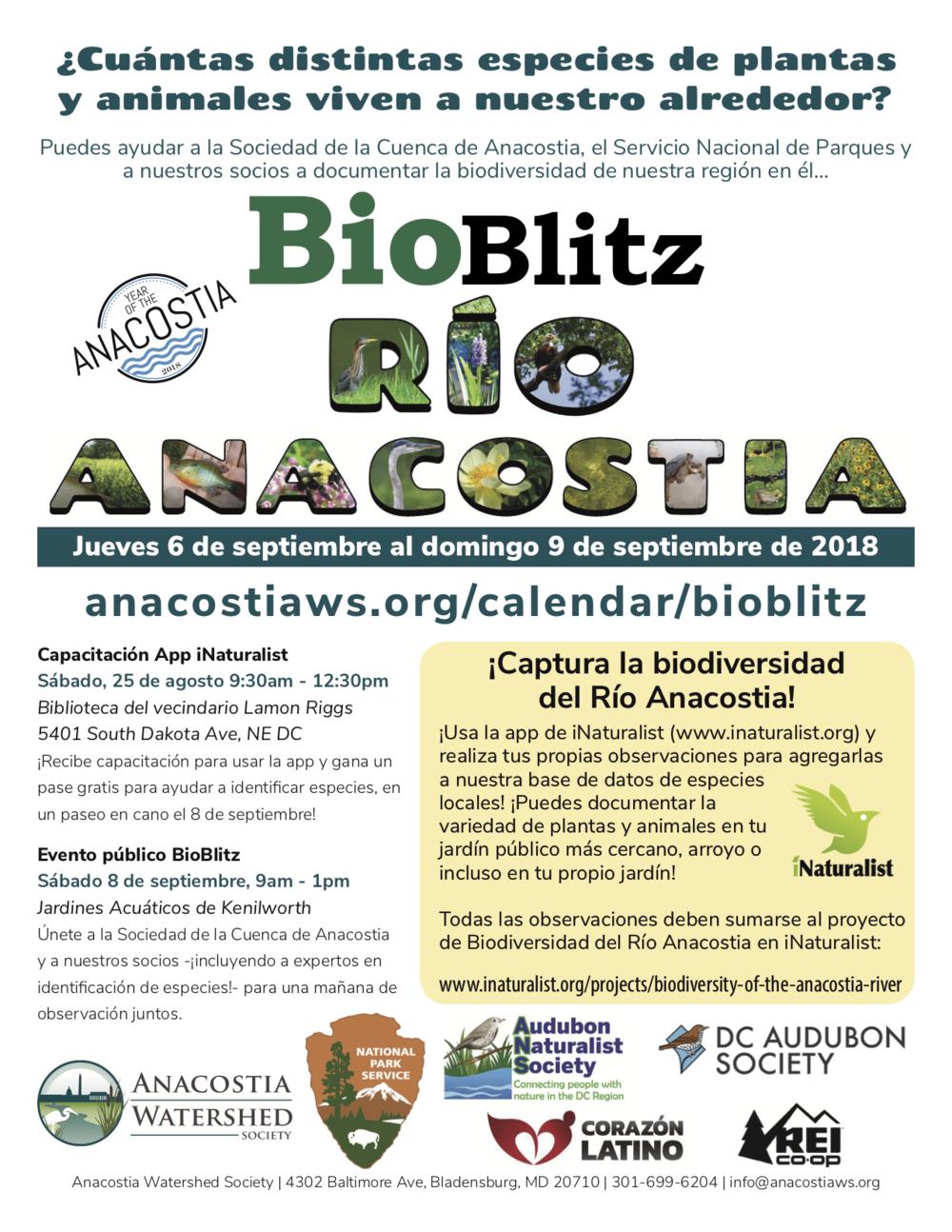 bioblitz-flyer-espanol.png