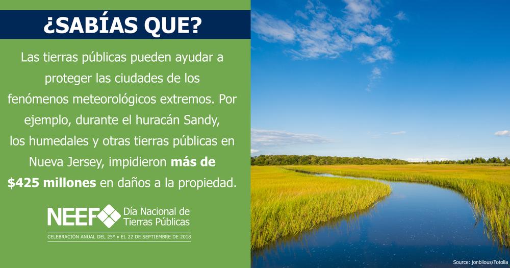SOCMED18-NPLD-FunFacts-WetlandsDisasterRelief-Spanish-2540x1334.png