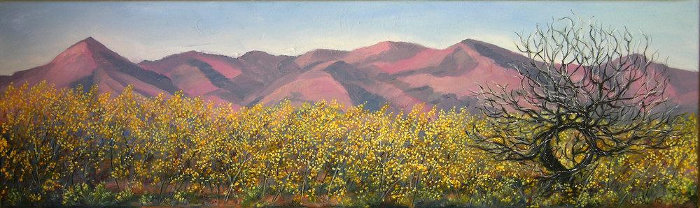 Springtime flinders Ranges SA. 23 x 76cm.jpg