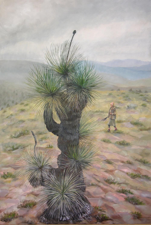 Xanthorrhoea Warraweena Nth Flinders.91 x 61cm.jpg