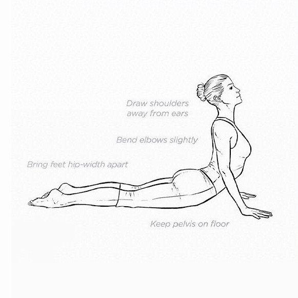 Benefit of Cobra Pose (Bhujangasana).jpeg