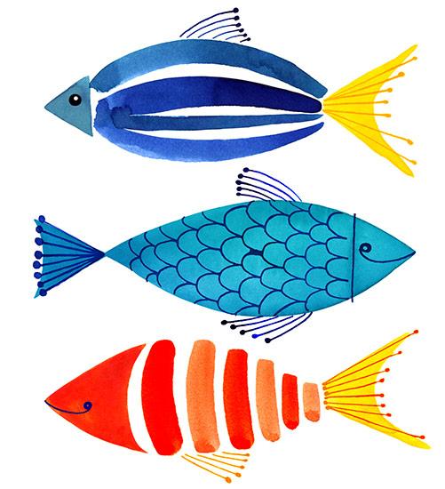 (圖片來源:www.magrikie.com)