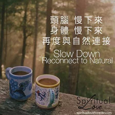 頭腦慢下來 身體慢下來 再度與自然連接