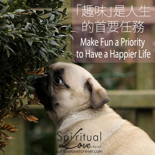 20150427-Quote_Make_Fun_Pug.jpg