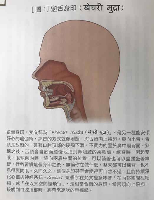 逆舌身印Khecari Mudra - 圖片來源:《靜坐的科學、醫學與心靈之旅:21世紀最實用的身心轉化指南》~作者:楊定一 , 楊元寧 (按此到博客來網站購買此書)