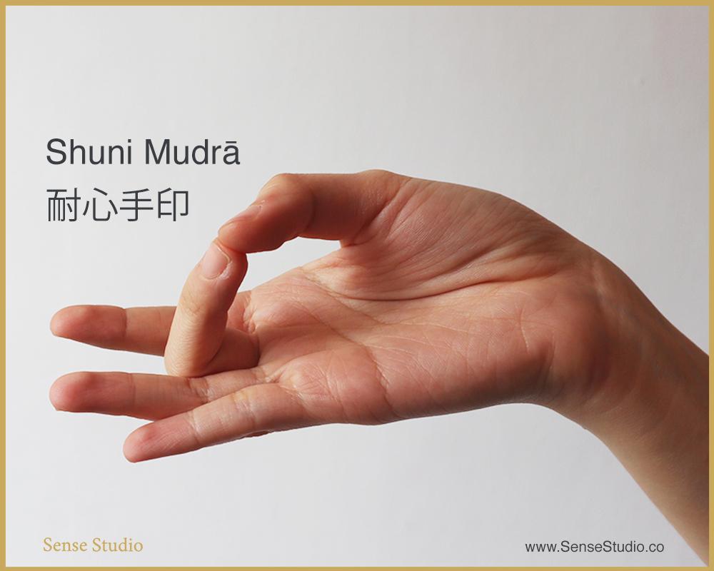 2.Shuni Mudra-sense-studio.jpeg