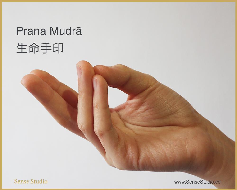 5.Prana Mudra-sense-studio.jpeg