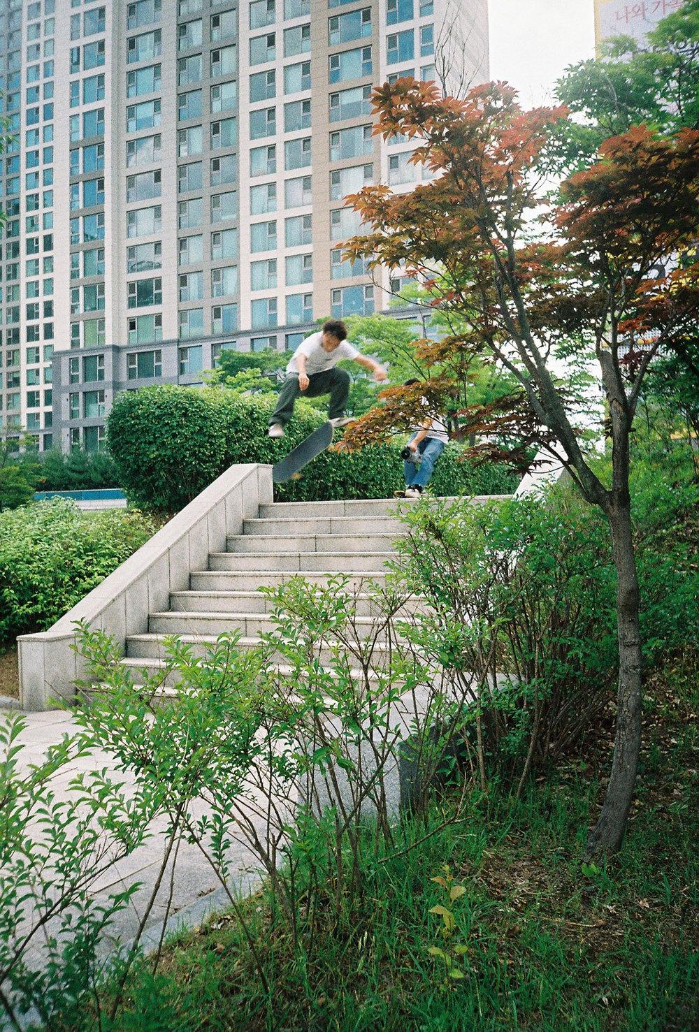 Vans_Cross-Pollination_Juwon_Treflip.jpg