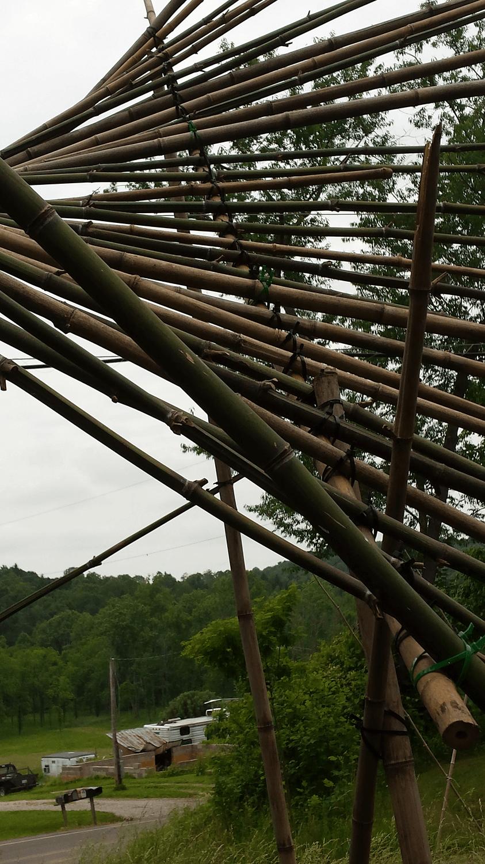 Bamboo flight 11.png