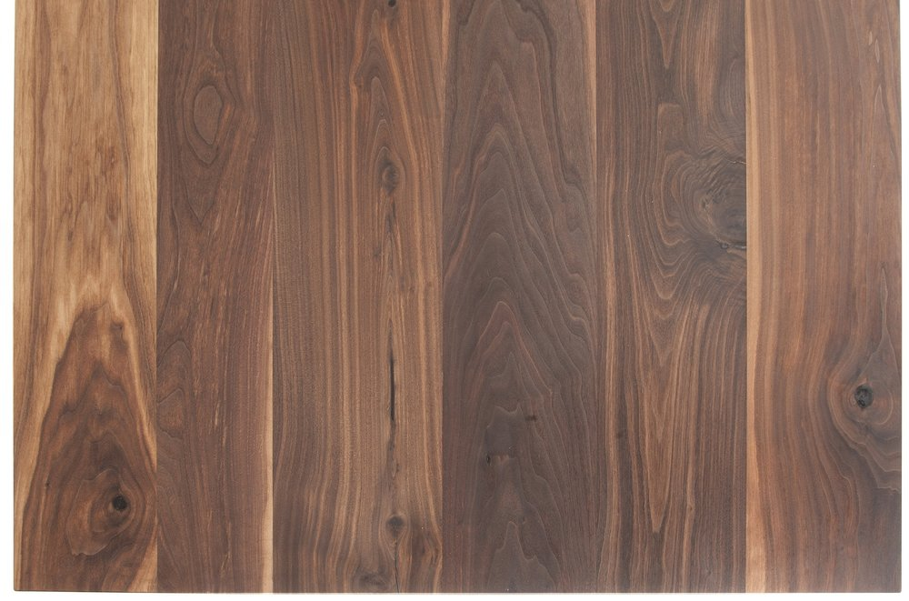 American black walnut example