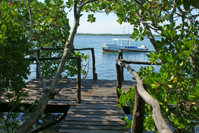 CREEK FRONT HOUSES - Properties that overlook Watamu's stunning Mida Creek