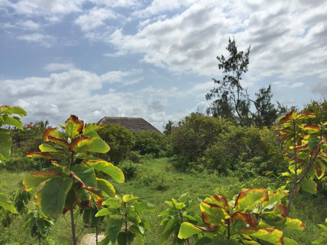 ONE THIRD OF AN ACRE FOR SALE IN SECOND ROW - CLOSE TO OCEAN SPORTS  - Ref:  WHE03