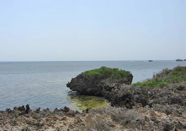 NEW 2 ACRES OF BEACHFRONT / CLIFF FRONT PLOT NORTH OF WATAMU  - (REF:  NVE01)