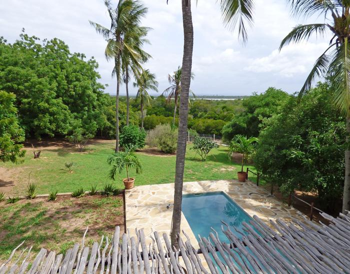 DK-pool-garden.jpg