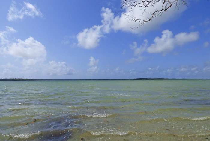 NEW6.1 ACRES OF CREEKFRONT LAND, NORTH OF MIDA CREEK FOR SALE - (Ref: MCMK01)