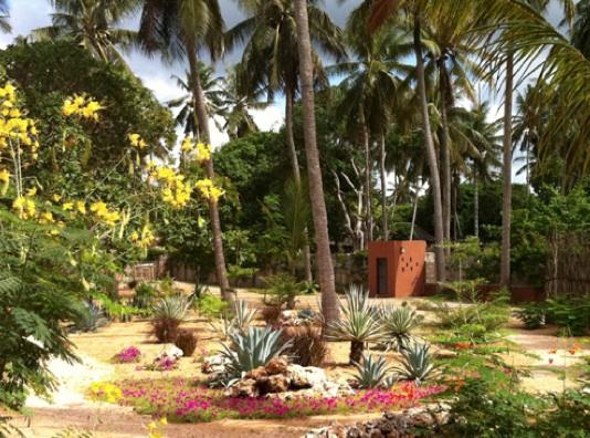 Dar Meethi - Garden.jpg